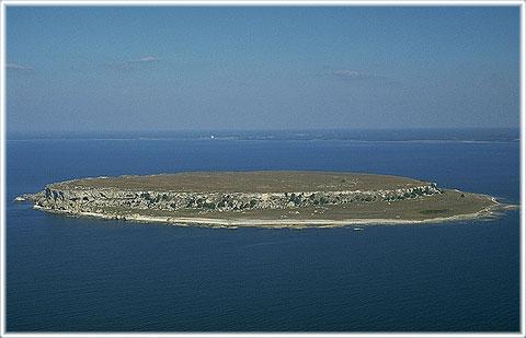 Lilla Karlsö | Länsstyrelsen Gotland