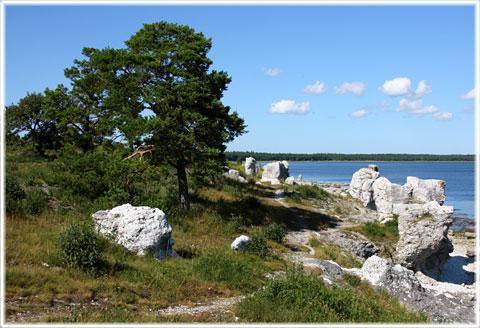rute gotland karta Gotland självsnyggt rute gotland karta